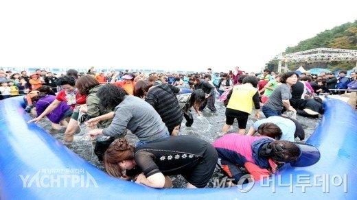 지난 10월 열린 갯마을 뻘낙지 먹물축제 현장에서 참가자들이 맨손낙지잡기를 체험하고 있다/사진=서산시