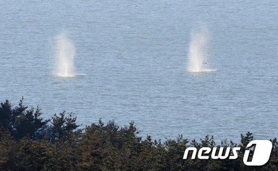 지난해 3월 북한이 31일 서해상 해상 사격훈련에서 모두 500여 발의 해안포와 방사포를 발사했으며 이 가운데 100여 발이 NLL 이남 우리 해상에 떨어졌다. 우리 군도 K-9 자주포와 벌컨포 등을 이용해 NLL 이북 해상을 향해 300여발의 대응사격을 실시하는 등 즉각 대응에 나섰다.(자료사진) 2014.3.31/뉴스1 ⓒ News1