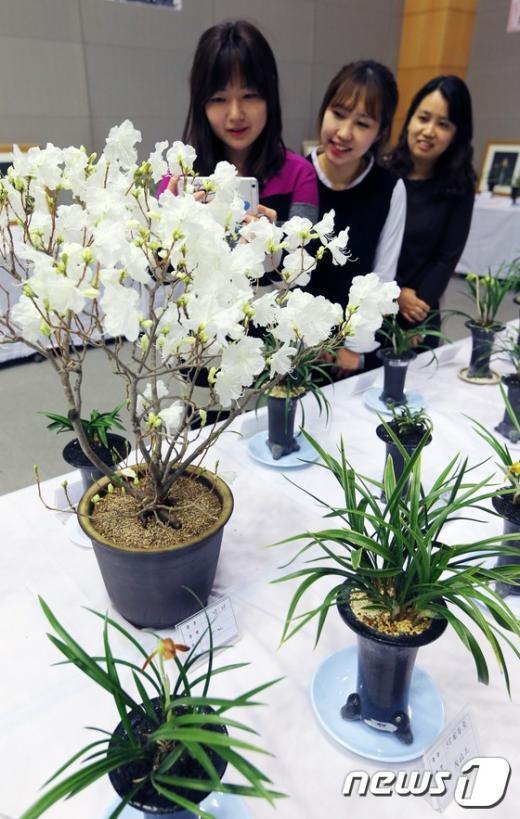 [사진]'봄 향기 가득'