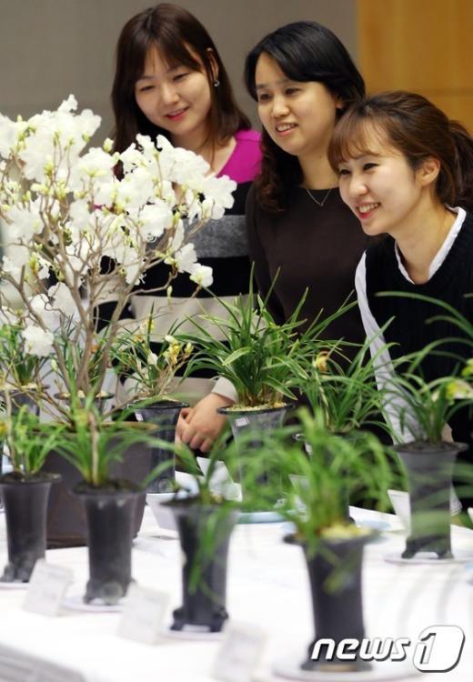 [사진]농협난우회, 한국춘란전시회 개최