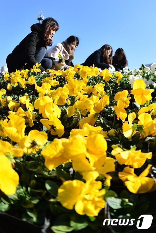 [사진]'꽃 심는 봄처녀'
