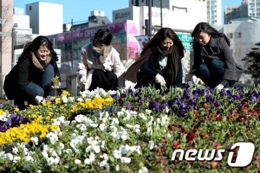 [사진]'봄을 심자'