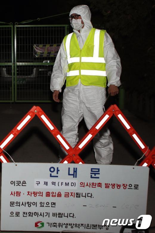 [사진]'구제역 어디까지 확산되나'