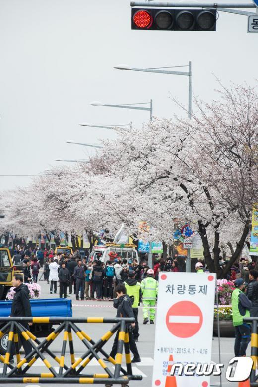 [사진]여의도 봄꽃축제 '차량출입 안돼요'