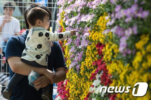 [사진]'아빠 이건 무슨 꽃이야?'
