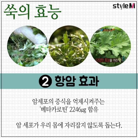 [카드뉴스] 봄 제철음식 '쑥'…여성 질환에 특히 좋은 이유는?