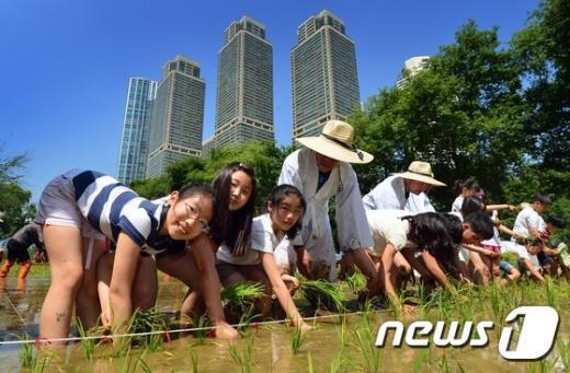 [사진]꼬마 농부들의 모내기 체험