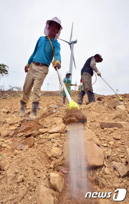 [사진]극심한 가뭄, 속타는 농심