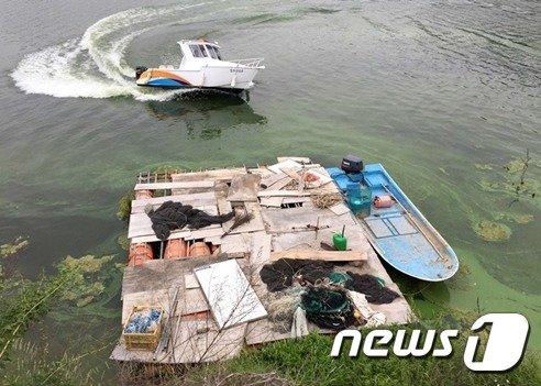 [사진]낙동강에 4년째 '녹조라떼' 발생