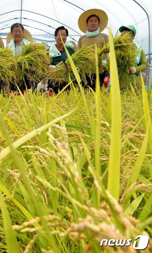 [사진]'수확의 기쁨'