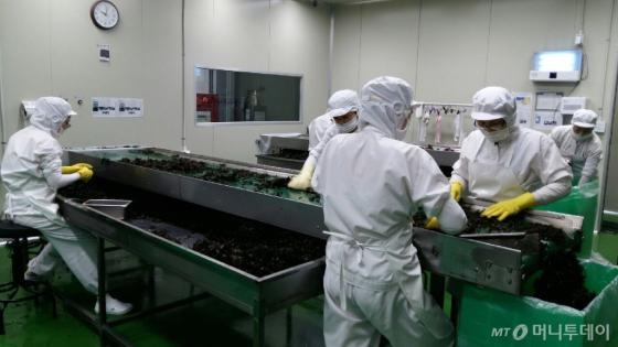 제이케이푸드 시간선택제 근로자들이 생산라인에서 업무를 수행하고 있다/사진=고용노동부