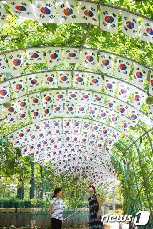 [사진]동대문구청 광장에 마련된 태극기 터널