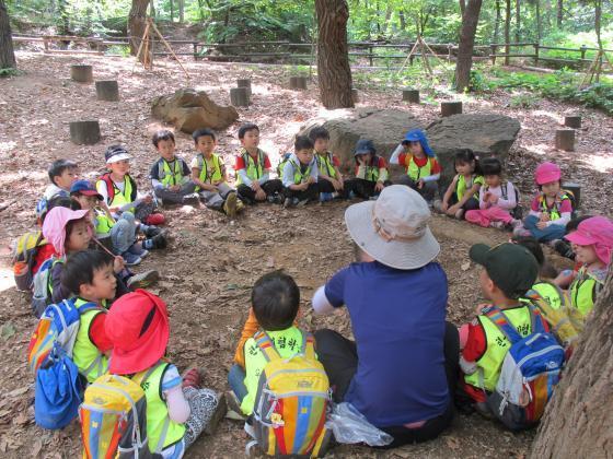 서울 강서구 우장공원에서 유아들이 숲을 즐기고 있다./사진제공=서울시