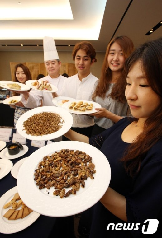 [사진]'식용곤충 요리 맛보세요'