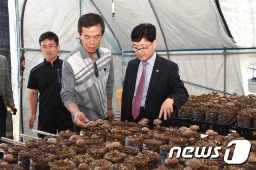 [사진]표고버섯 재배 시설 둘러보는 신원섭 청장