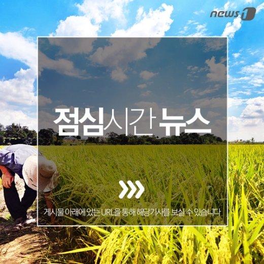 [주요뉴스] AOA 설현, 프로야구 SK-삼성전 시구 외