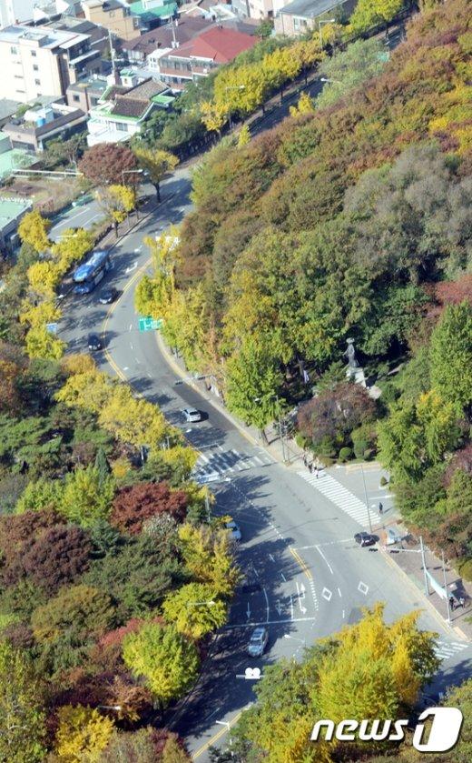 [사진]소월길의 가을풍경