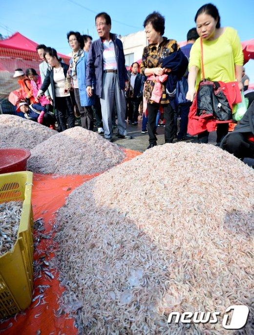 [사진]'가뭄에 새우 어획량 감소...가격 상승으로 이어져'