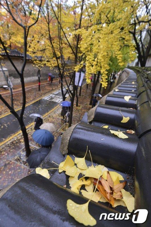 [사진]낙엽지는 정동길
