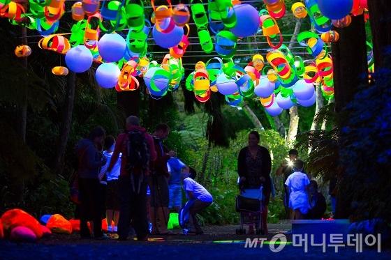 TSB 뱅크 전등 축제/사진제공=뉴질랜드관광청