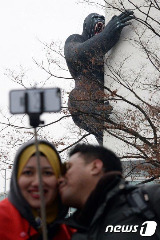 [사진]'고릴라가 보고있다'