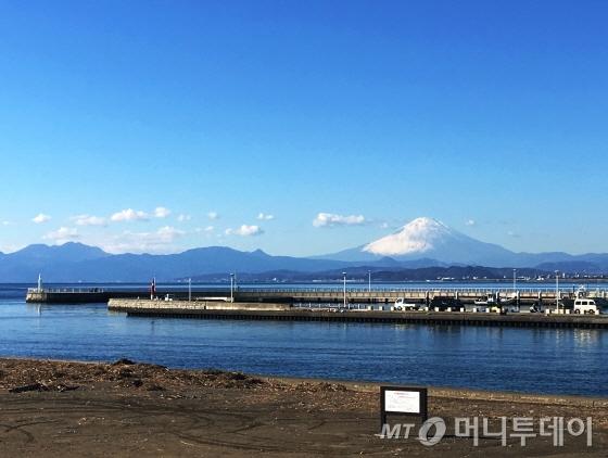 도쿄 인근 에노시마에서 바라본 후지산 /사진=이지혜 기자