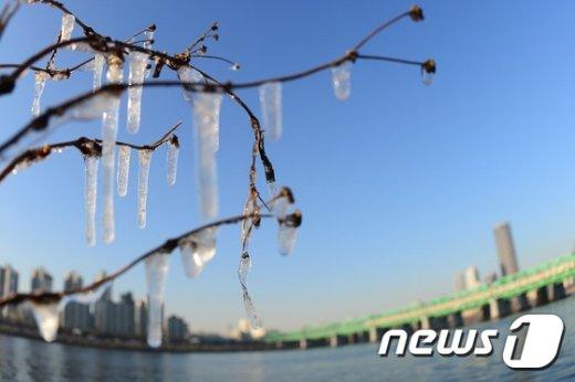 서울 아침 기온이 영하 8도를 기록하는 추운 날씨가 이어지는 12일 오후 서울 용산구 노들섬 주변 나무에 고드름이 열려 있다. © News1 임세영 기자