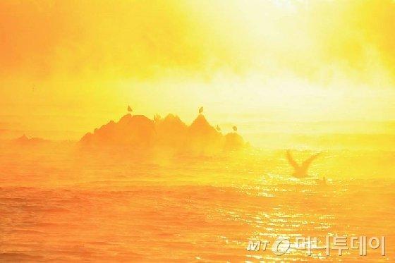 일출 무렵의 문무대왕릉/ 사진=이호준 시인·여행작가