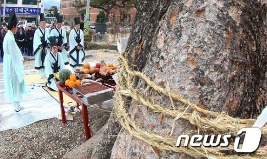 [사진]학사루 느티나무에서 열린 당산제