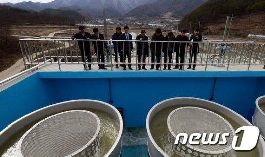 [사진]정화시설 도착한 금강물, 보령댐으로