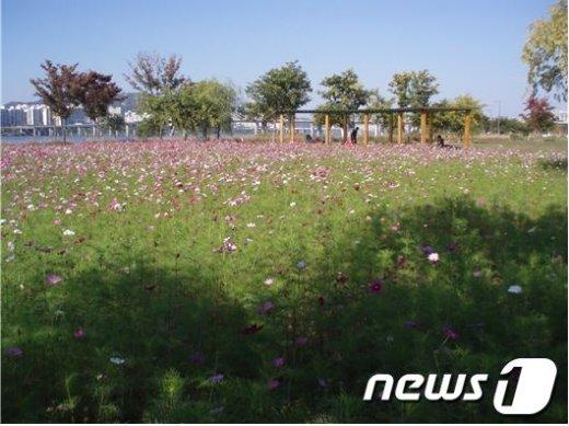 광나루 한강공원 © News1