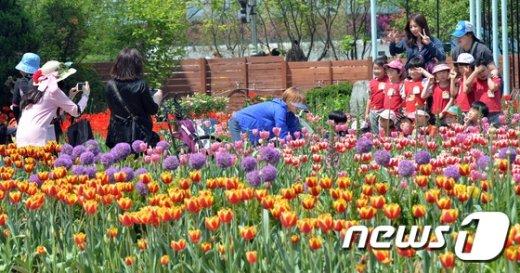 [사진]꽃밭에서 추억만들기