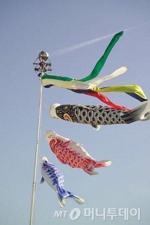 바람에 휘날리는 고이노보리 /사진= @퍼블릭 도메인 이미지