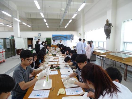 전남대 여수캠퍼스 자유학기제 지원프로그램 운영 사진