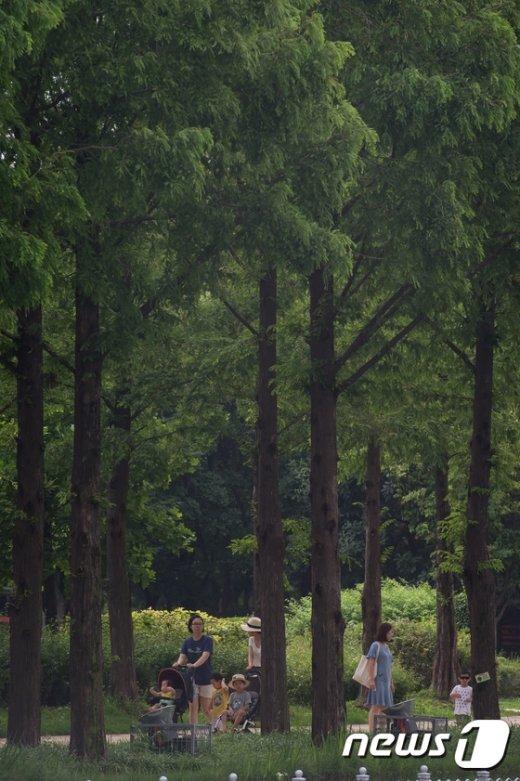 [사진]'나무그늘아래'
