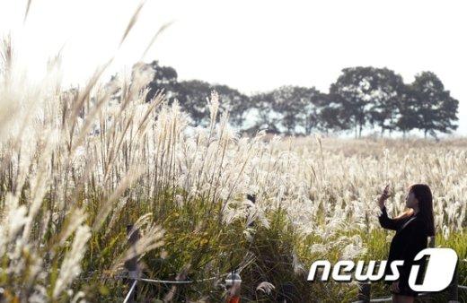 [사진]'완연한 가을'