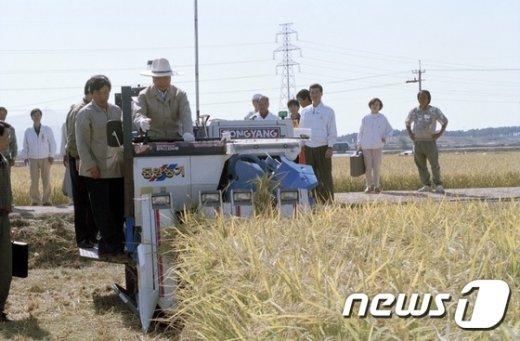 [사진]직접 벼베는 김영삼 전 대통령