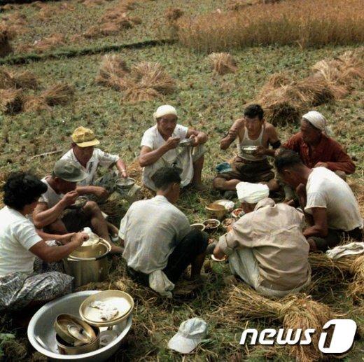 [사진]새참 먹는 농민들