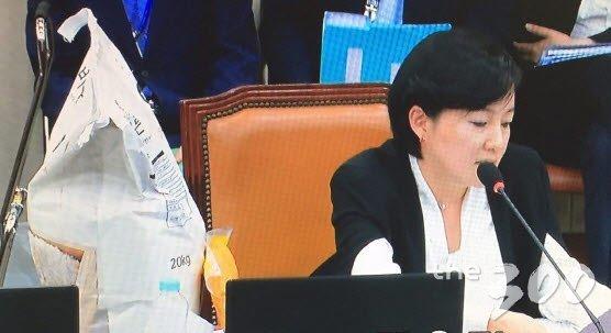 제윤경 더불어민주당 의원, 국감 중계 화면/머니투데이