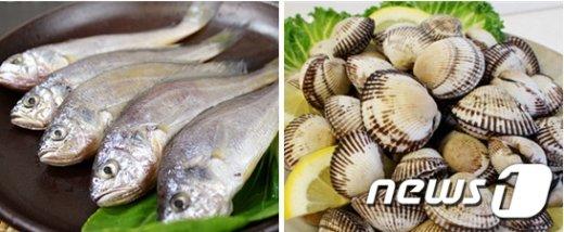[사진]2월 어식백세 수산물 '조기·꼬막'
