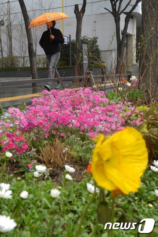 [사진]'비와 함께 찾아온 봄'