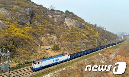 [사진]서울의 봄