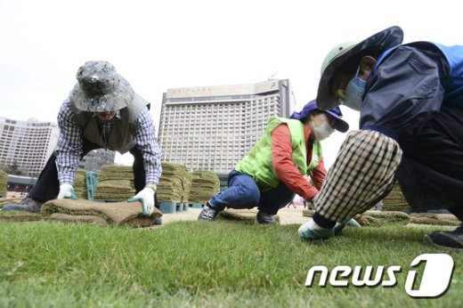 [사진]'서울광장 잔디 식재 중'