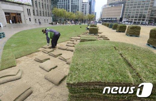 [사진]예년보다 늦어진 서울광장 잔디 식재