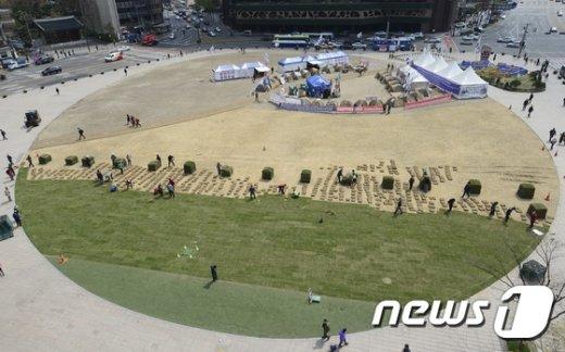 [사진]잔디옷 입는 서울광장