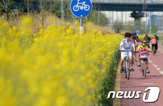 [사진]'자전거타고 꽃놀이'
