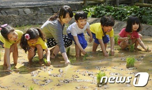 지난해 6월 서울의 한 지역에서 어린이들이 도시농업 체험을 하고 있다. /뉴스1 DB © News1