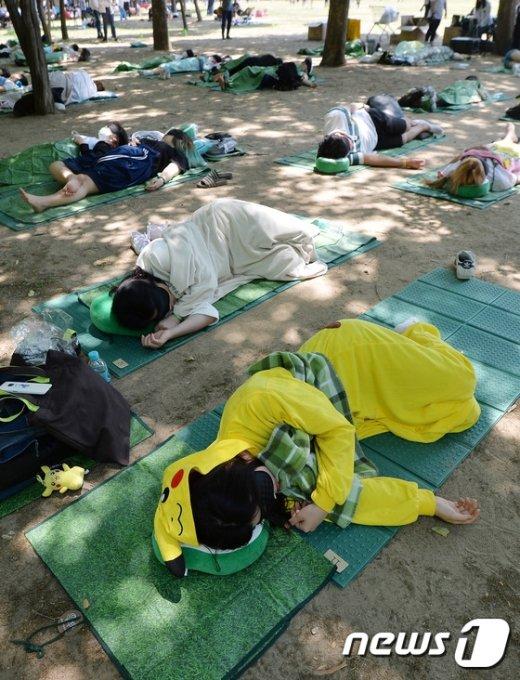 [사진]'지금은 낮잠 시간'