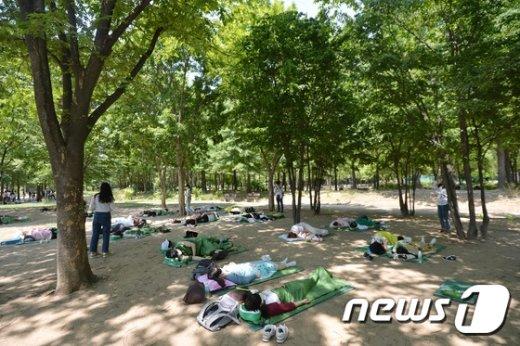 [사진]숲속에서 즐기는 낮잠