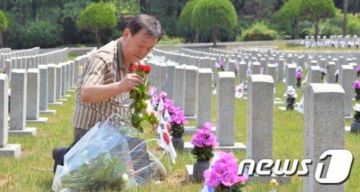 [사진]붉은 장미 헌화하는 월남전쟁 참전용사